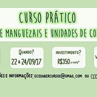 Curso prtico Ecologia de manguezais e UCs