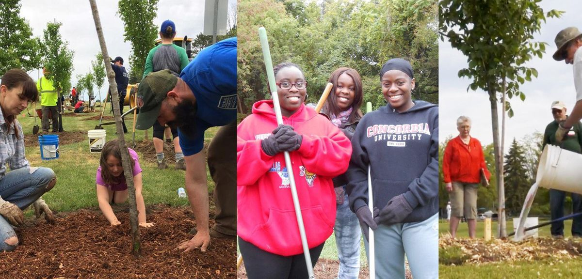Detroit Tree Planting in Forest Park