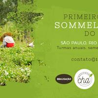Curitiba - Sommelier de Ch (Intensivo de janeiro)