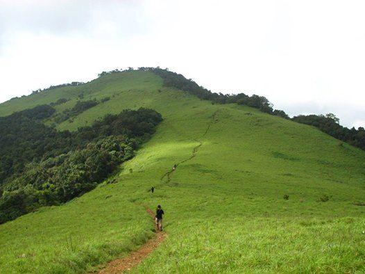 Two days trek to Paithalmala