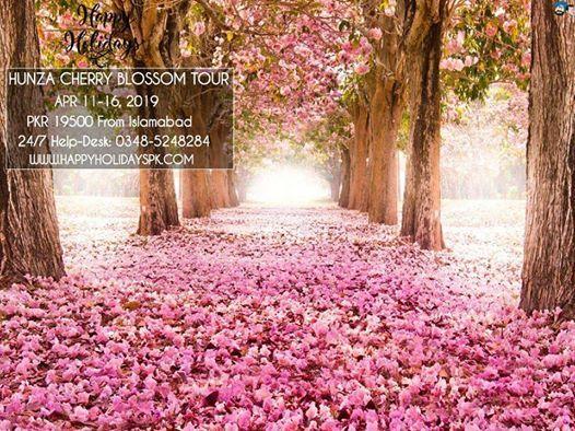 6 Days Hunza Cherry Blossom Tour (HHPKGIL19)