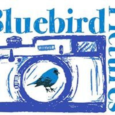 Bluebird Pictures