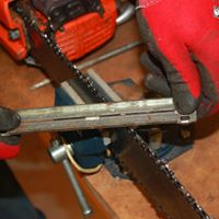Domestic chainsaw use workshop