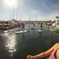 Paddle Into Fitness Paddleboard &amp SUP Yoga Certification