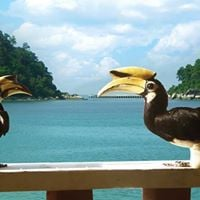 Natures Private Island Pangkor Island