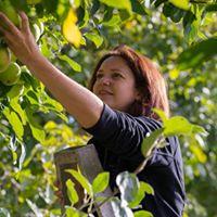 Apple Pruning Workshop
