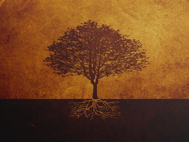 Sunday Worship Luke 13 1 9 The Unfruitful Fig Tree At