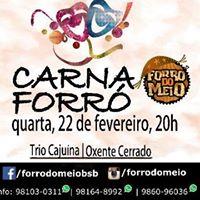 CarnaForr - O grito de Carnaval do Forr do Meio
