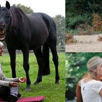 Lucie Klaassen - Body Awareness for Horse and Rider