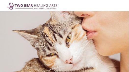 Reiki Level 2 + Animal Reiki Training & Certification at