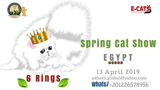 2nd CFA Spring Cat Show       ..