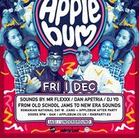 Applebum Romanian Tour  Iasi Underground