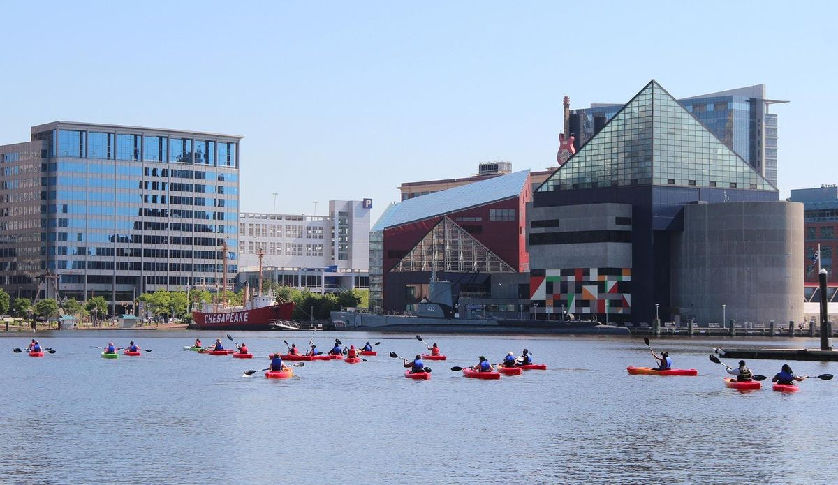 Inner Harbor Kayak Tours