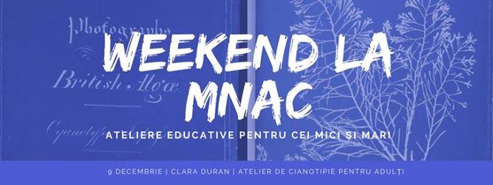 Weekend la MNAC Atelier de cianotipie pentru aduli