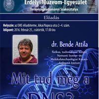Bende Attila Mit tud mg a DNS