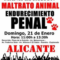 Manifestacin Maltrato Animal endurecimiento penal.
