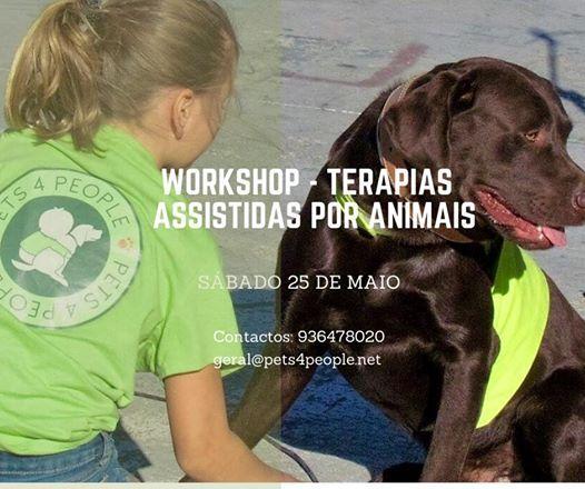 Workshop - Terapias Assistidas por Animais