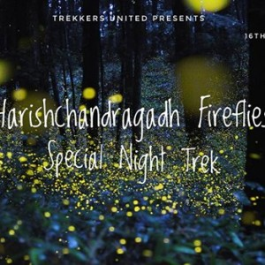 Harishchandragadh fireflies Special Night Trek