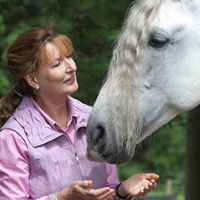 Healing for Horses and Communicating with Horses