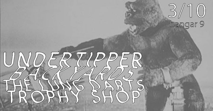 Undertipper (OH) Backyards The Lung Darts Trophy Shop