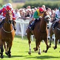 Members race trip to Ripon - free coach