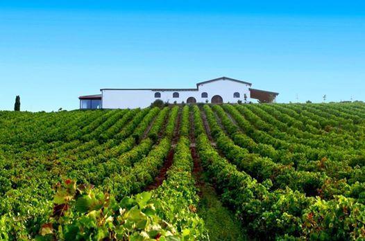 Sabato di degustazione vini a Cagliari