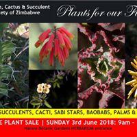Aloe Cactus &amp Succulent Society of Zimbabwes Plant Sale