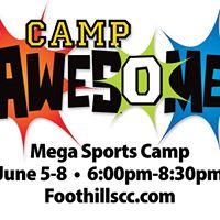 Camp Awesome Mega Sports VBS
