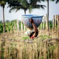 Zero Budget Organic Farming Workshop