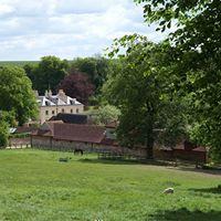 Summer Farm Walk and Picnic