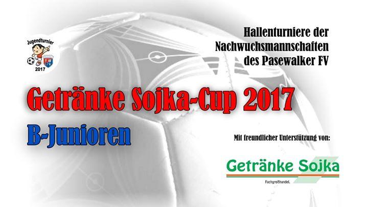 Getränke Sojka-Cup 2017 at Pasewalk, Ueckersporthalle, Pasewalk