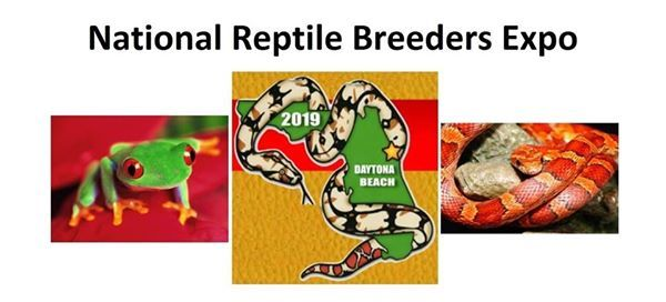 Reptile Expo Reptile Expo events in the City  Top Upcoming