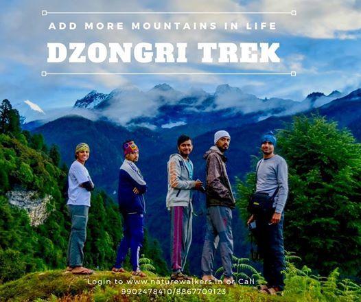 Dzongri Trek - Gateway to Kanchenjunga Mountain - Sikkim