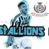 GLT Stallions Cup 17