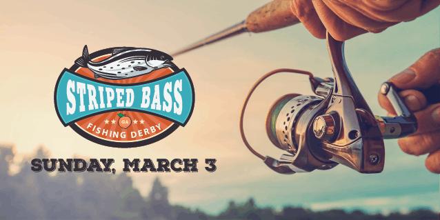 Striped Bass Fishing Derby