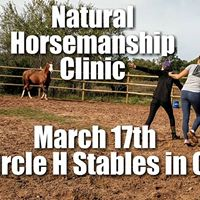 Horse Sense Beginner Natural Horsemanship Clinic