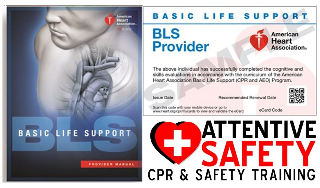 Bls For Healthcare Providers Class 100 Same Day Certification At