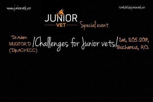 Challenges for Junior vets