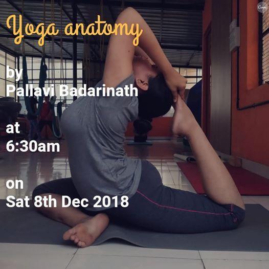Yoga Anatomy Basics