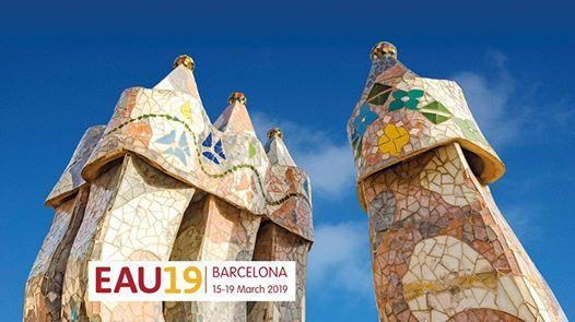 34th Annual EAU Congress (EAU19)