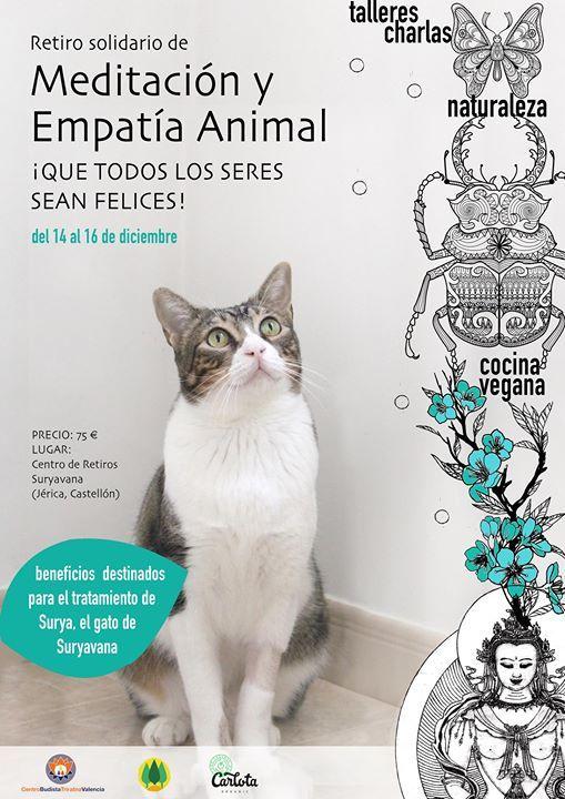 Retiro solidario y dedicado a la empata con los animales