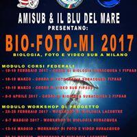 Bio-foto-MI biologia foto e video Sub Fipsas a Milano