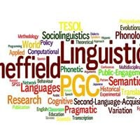 Sheffield Linguistics PG conference (4th ed)
