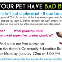 Does Your Pet Have Bad Breath