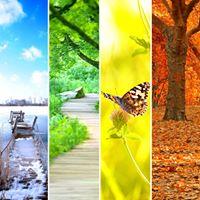 Biodanza &amp Healing Tao jaarcyclus