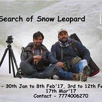 In search of Snow Leopard in Leh ladakh