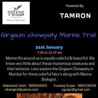 Girgaum Chaupati Marine Trail  Mumbai