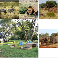 Meru National Park Overland Camping Package 12500 Book Now