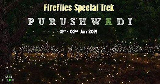 Fireflies Special Tour