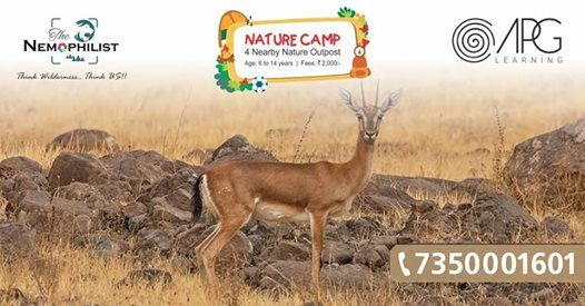 Diwali Special- Nature camp for Kids
